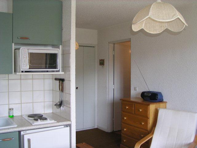 Kitchenette Location Apartment 2312 Barcelonnette