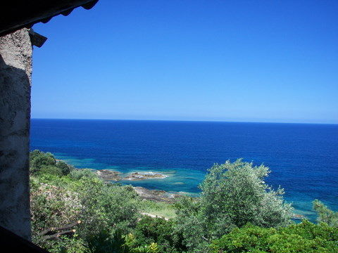View from the balcony Location House 40911 Ste Lucie de Porto Vecchio