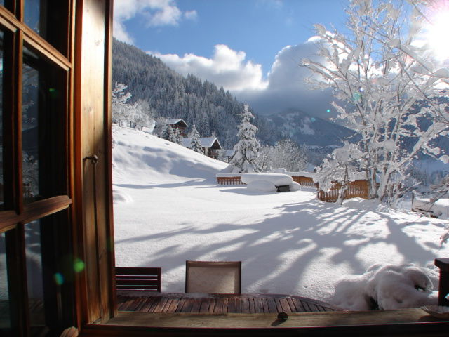 View from the property Location Chalet 600 Châtel