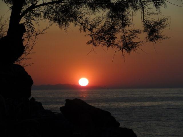 Location Apartment 62556 Rio nell'Elba