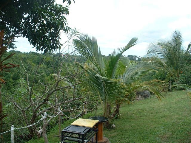 View from the property Location Bungalow 8003 Gosier (Guadeloupe)