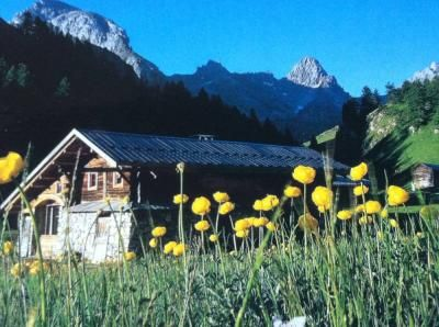 View of the property from outside Location Chalet 79860 Arvieux en Queyras