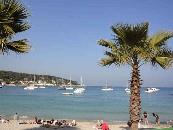 Beach Location Apartment 80731 Cannes