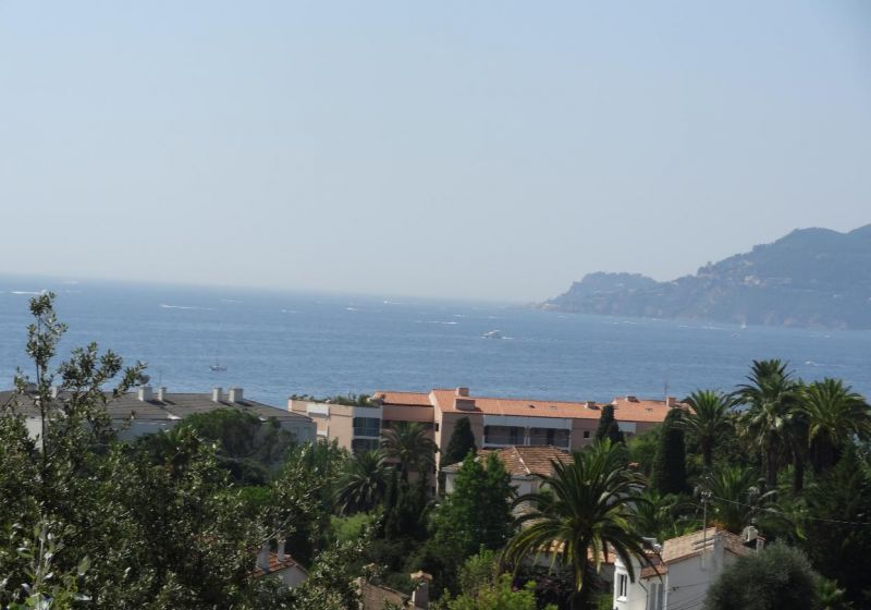 View from the terrace Location Apartment 88211 Cannes