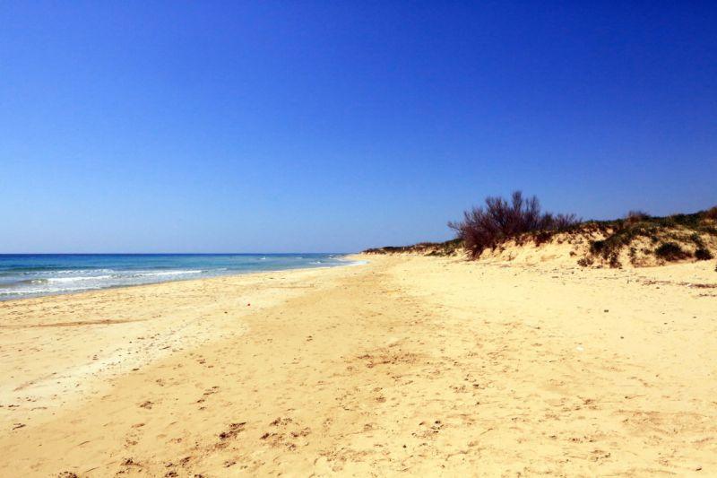 Beach Location Apartment 75278 Pescoluse