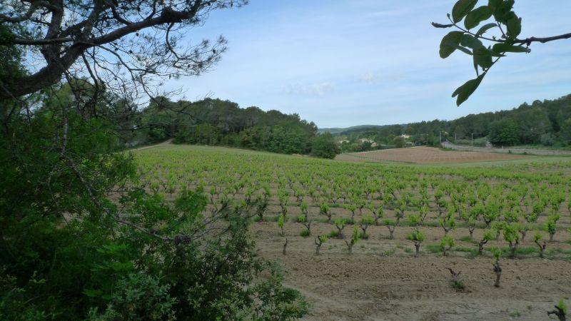 Surroundings Location Villa 115618 Lorgues