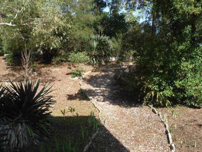 View from the terrace Location Villa 116115 Lège Cap Ferret
