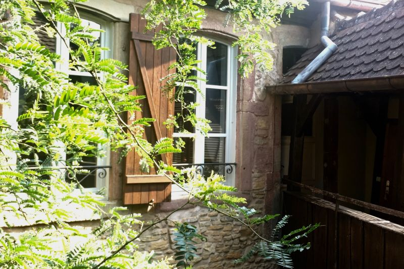 View of the property from outside Location Apartment 116442 Turckheim