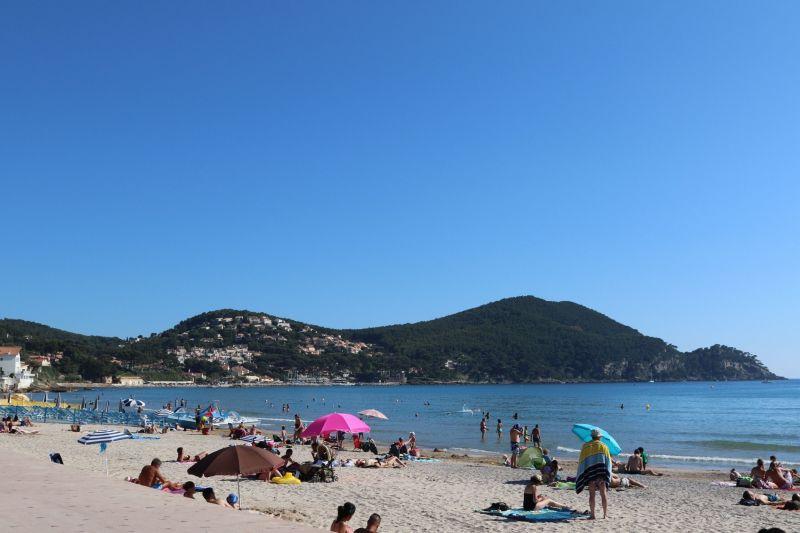 Beach Location Villa 118107 Saint Cyr sur Mer