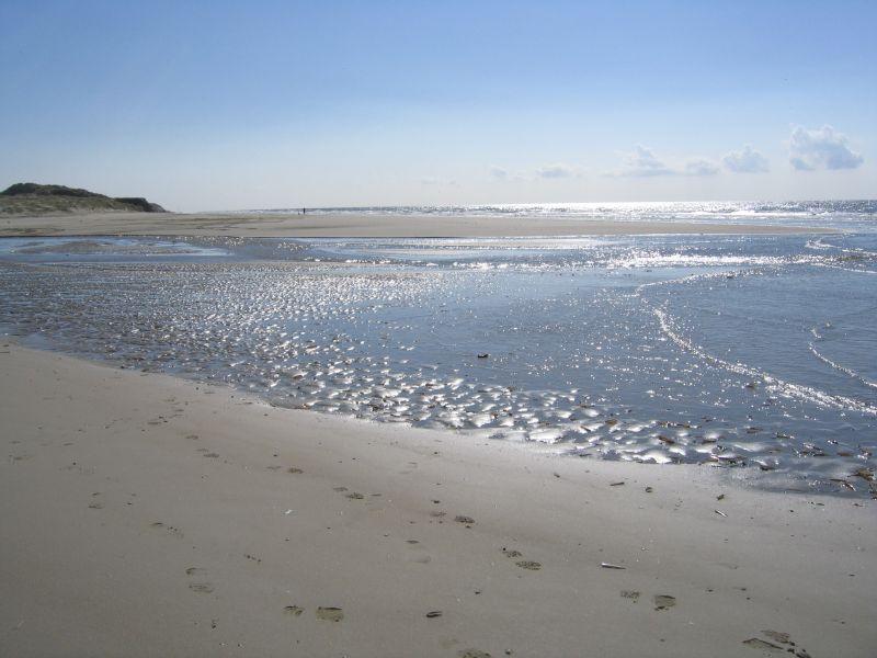 Beach Location House 80399 Le Touquet