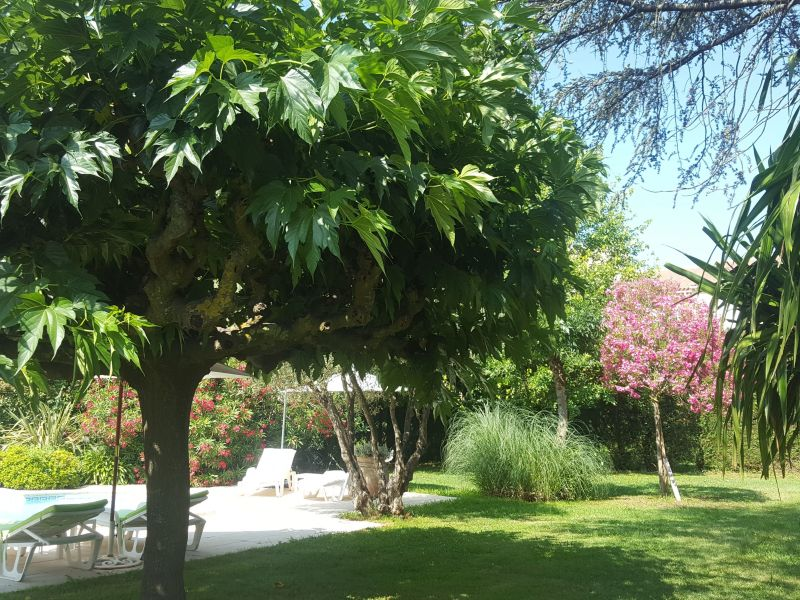 Garden Location Apartment 93460 Saint Tropez