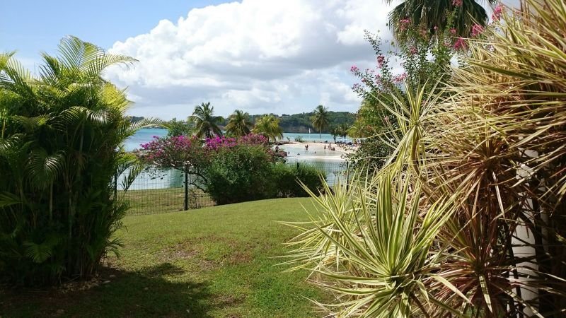 Location One-room apartment 101387 Gosier (Guadeloupe)