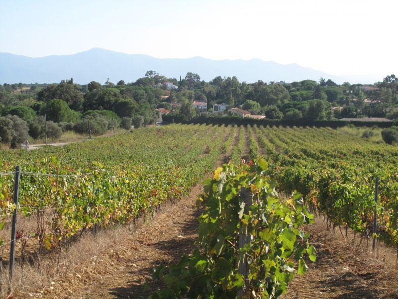 Surroundings Location Apartment 111646 Canet-en-Roussillon