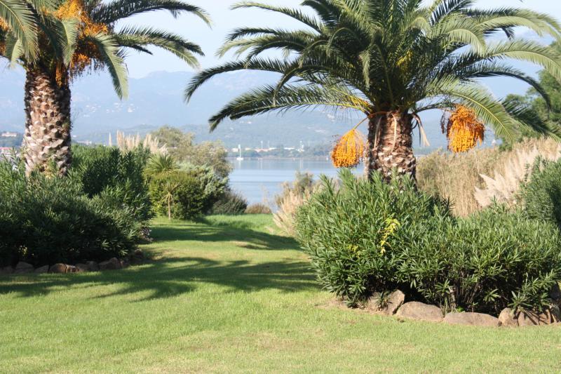 Garden Location Villa 84149 Porto Vecchio