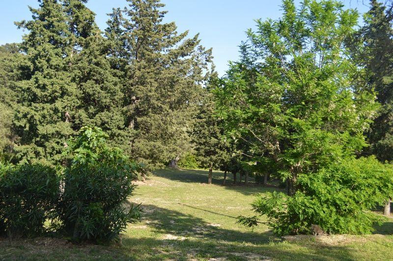 Garden Location Vacation rental 99880 La Ciotat