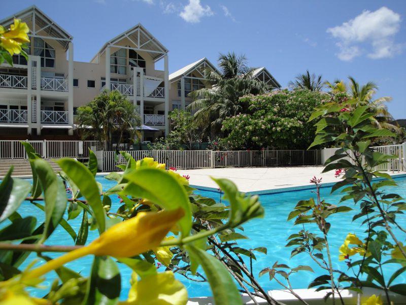 Swimming pool Location One-room apartment 116462 Le Diamant