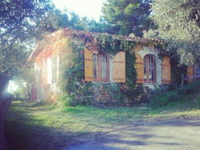 Location Villa 10245 Vieste