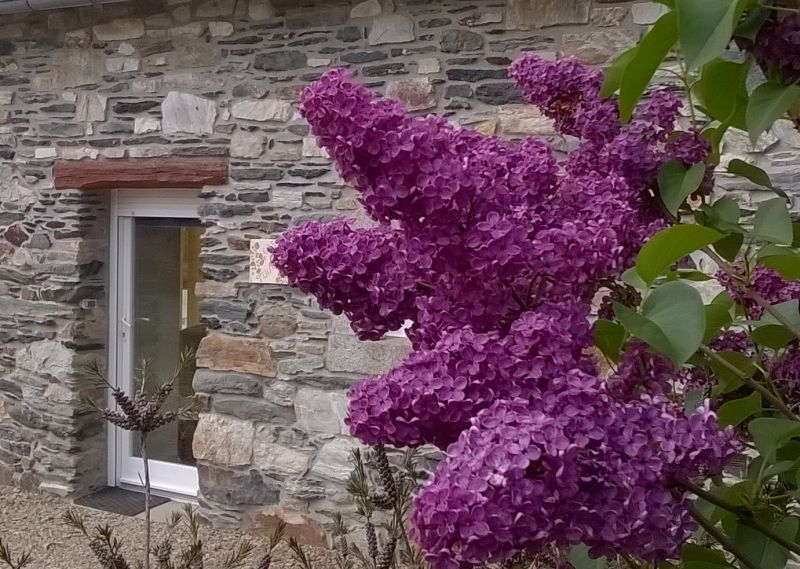 Location Vacation rental 13634 Morlaix