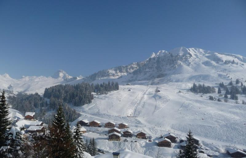View from the property Location Chalet 1390 Le Grand Bornand