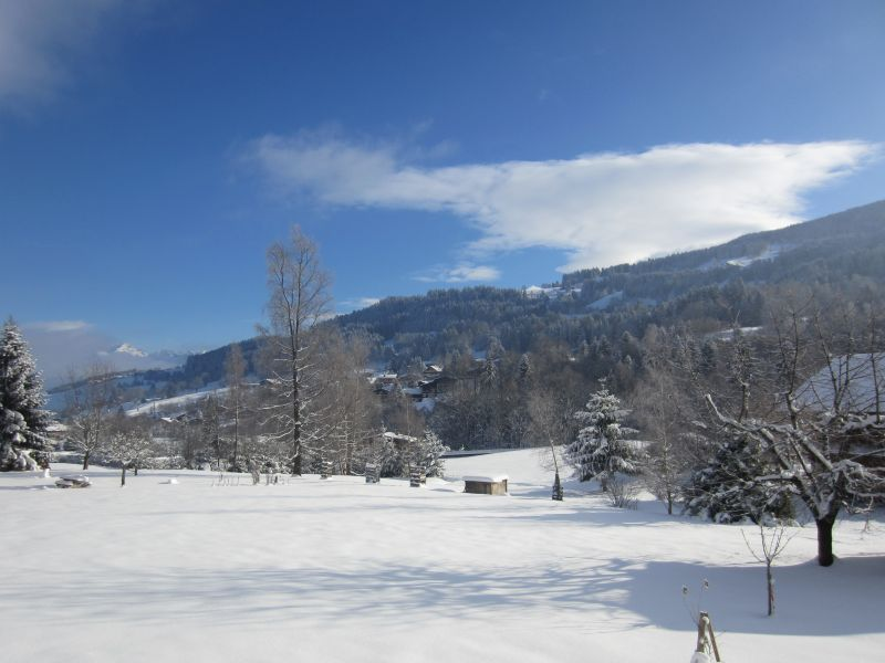 View from the property Location Apartment 1528 Megève