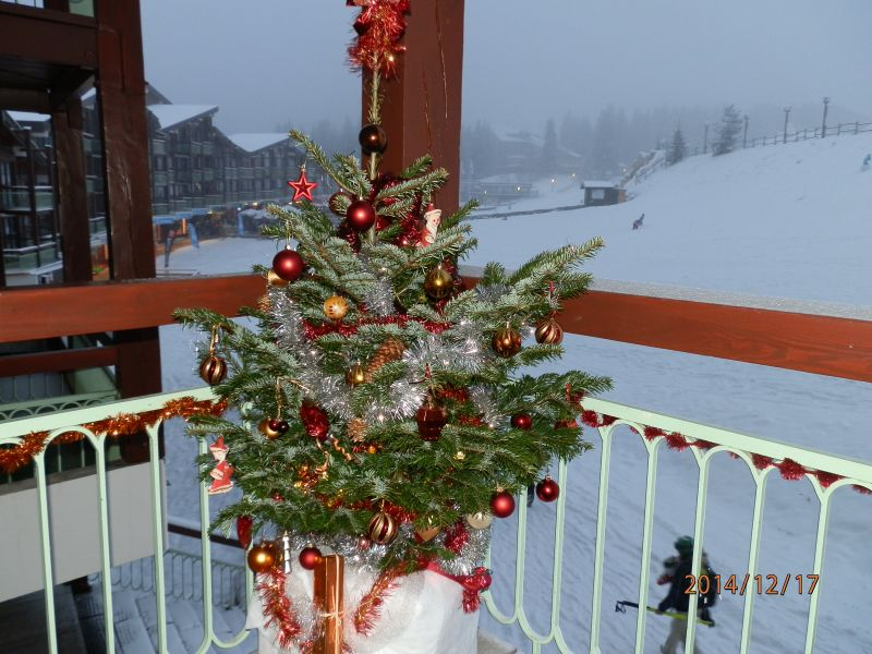 View from the balcony Location Apartment 20181 Les Arcs