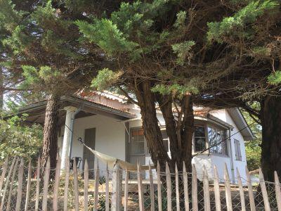 Location Villa 25030 Cap Ferret