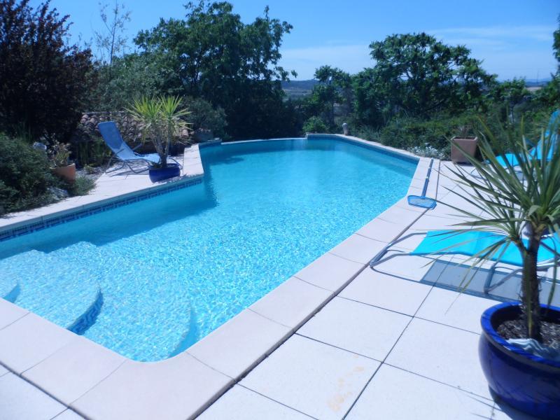 Swimming pool Location Villa 28268 Ruoms