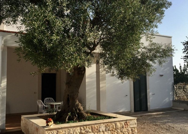 Location Apartment 32519 Polignano a Mare
