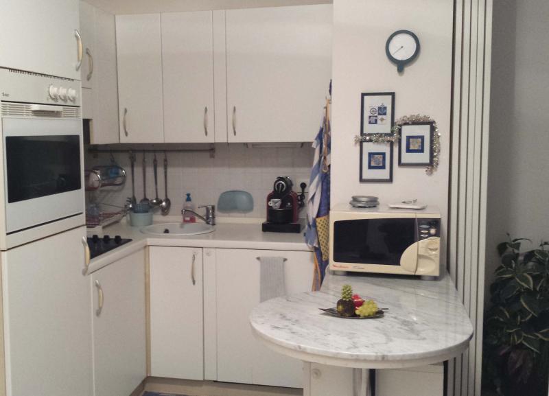 Kitchenette Location Apartment 35730 Menton
