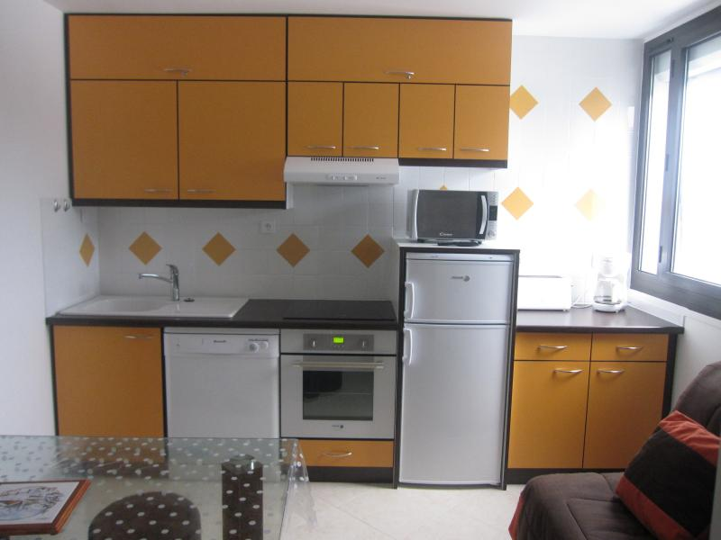 Kitchenette Location Apartment 3945 Arette La Pierre Saint Martin