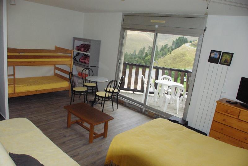 Living room Location Apartment 39476 Peyragudes