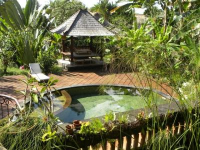 View from the terrace Location House 41763 Ubud