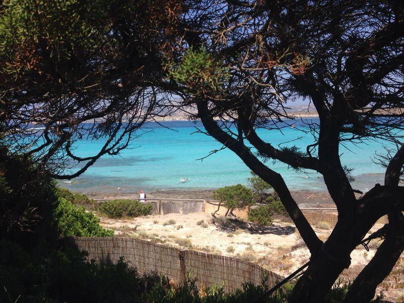 Beach Location Villa 44032 Stintino