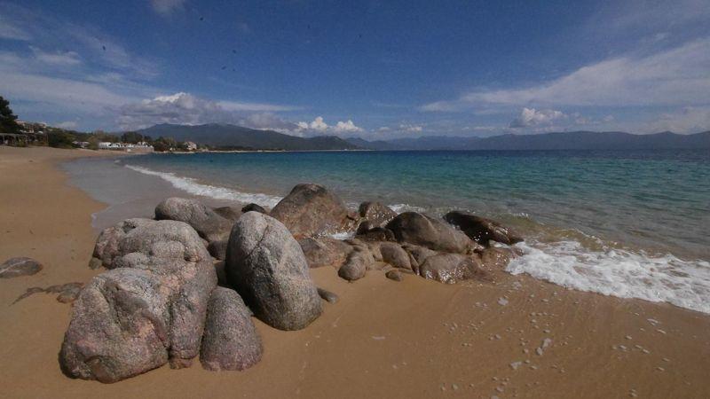 Beach Location Apartment 50333 Porto Pollo
