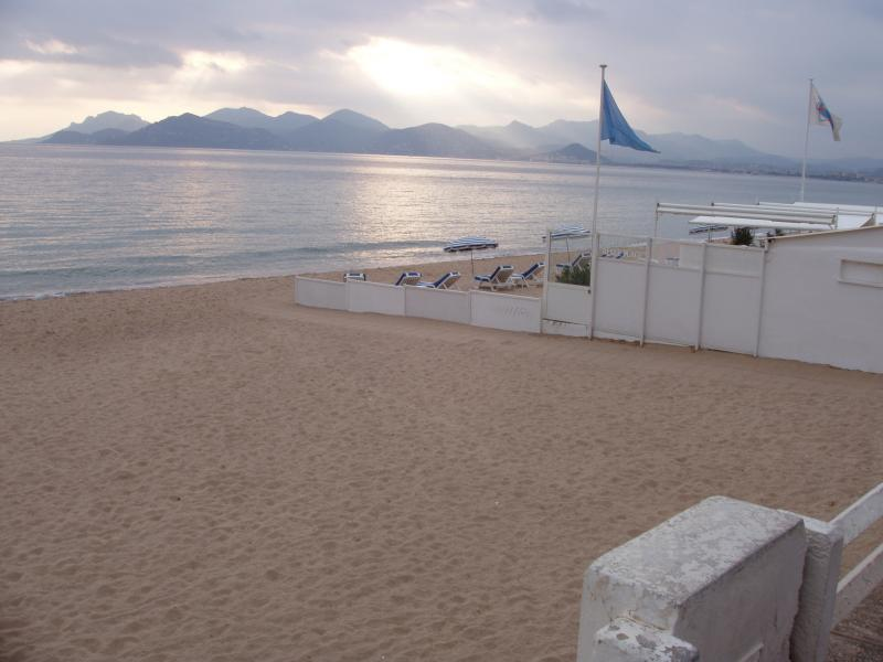 Beach Location Apartment 5542 Cannes