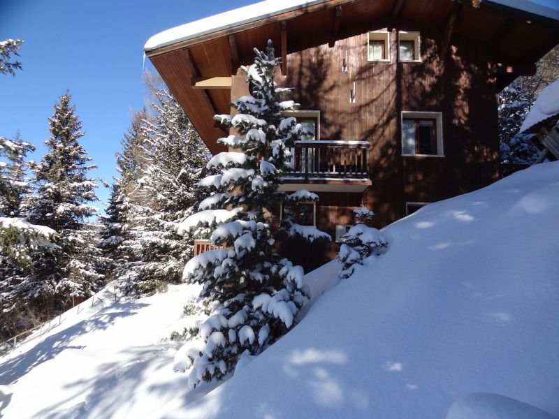 View of the property from outside Location Chalet 56090 La Plagne