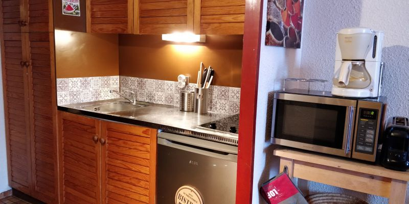 Kitchenette Location One-room apartment 59472 Piau Engaly