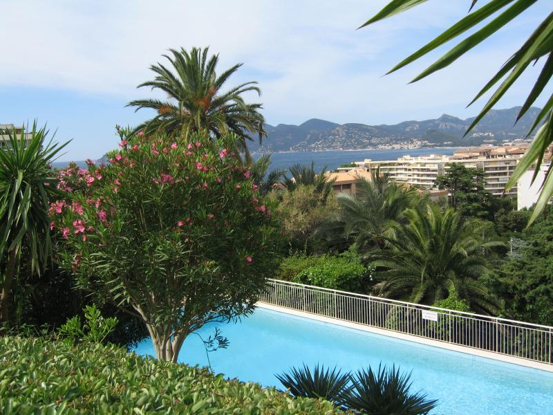 Swimming pool Location Apartment 62604 Cannes
