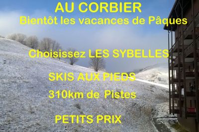 Location Apartment 112752 Le Corbier