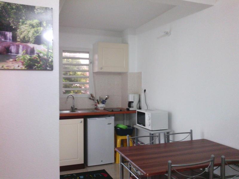 Kitchenette Location One-room apartment 74882 Port Louis