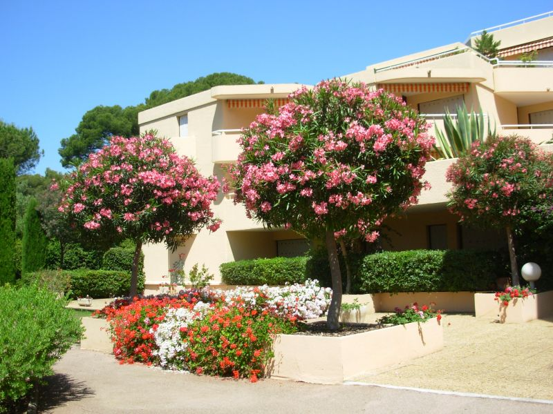 Location Apartment 107732 Saint Raphael