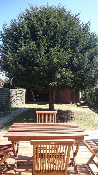 Garden Location Vacation rental 108872 Andernos les Bains