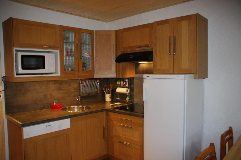 Open-plan kitchen Location Apartment 66973 Piau Engaly