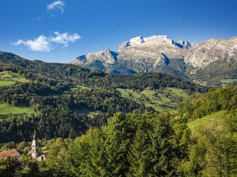 View from the terrace Location Chalet 101553 Manigod-Croix Fry/L'étale-Merdassier