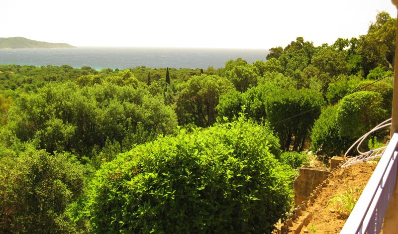 View from the terrace Location Apartment 83253 Cavalaire-sur-Mer