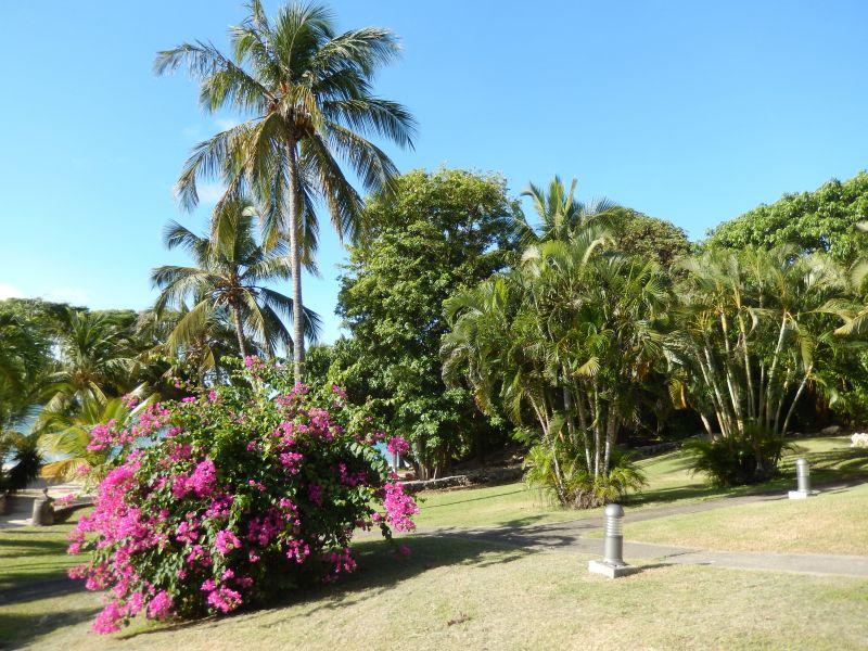 Garden Location Apartment 90989 Saint Francois
