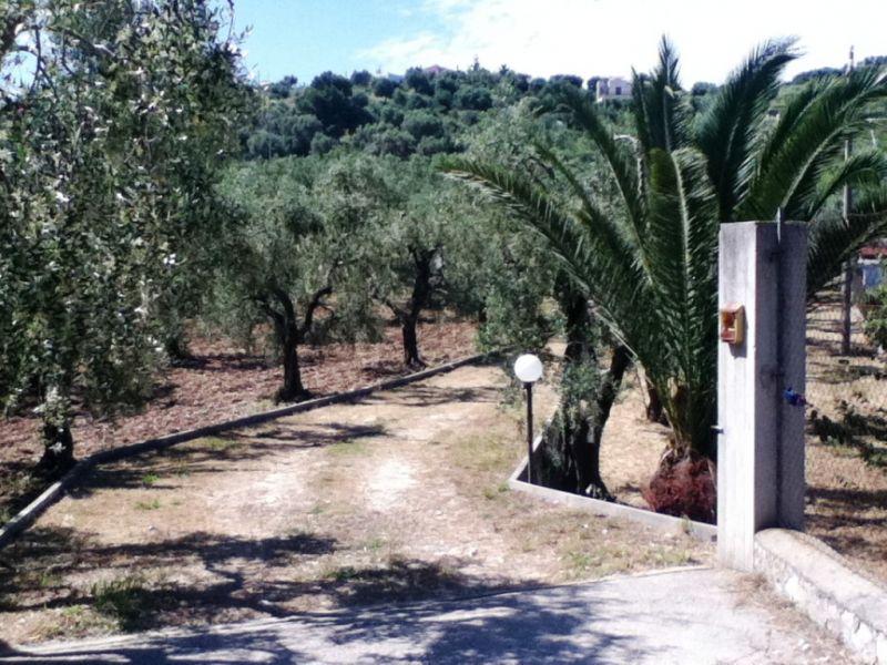 Garden Location Apartment 76391 Vieste