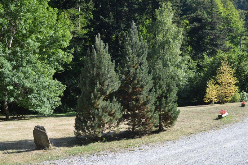Garden Location Vacation rental 102098 Saint Lary Soulan