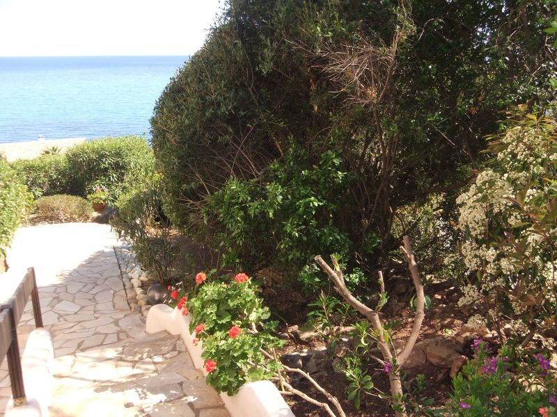 Garden Location House 107321 Ste Lucie de Porto Vecchio