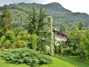 Villa Camaiore 8 people